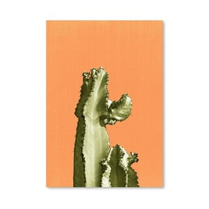 Plagát Cactus On Orange