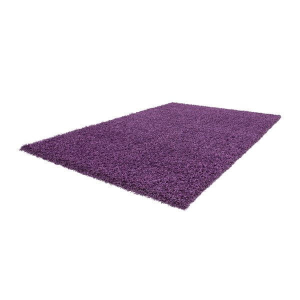 Koberec Guardian Violet, 160x230 cm