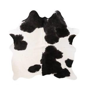 Čierno-biela pravá hovädzia koža Arctic Fur Nero Creamy, 142 × 186 cm