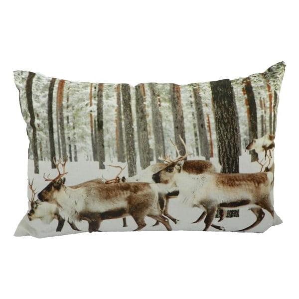 Vankúš Winter Reindeer  60x40 cm