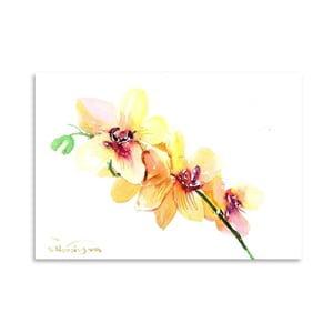 Plagát Peach Orchids od Suren Nersisyan