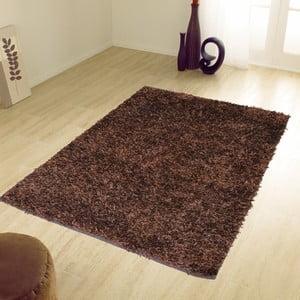 Hnedý koberec Webtappeti Shaggy, 60 x 100 cm