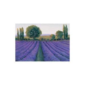 Obraz Lavender Field, 80x15 cm