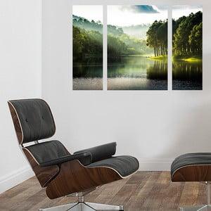 Samolepiace obrazy Lesy, 70x50 cm