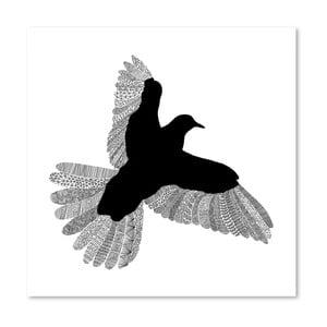 Plagát Bird White od Florenta Bodart, 30x30 cm