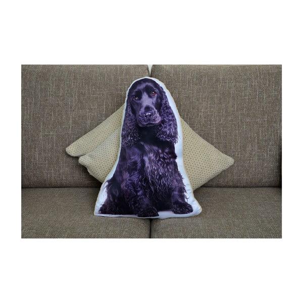 Vankúšik Adorable Cushions Kokeršpaniel