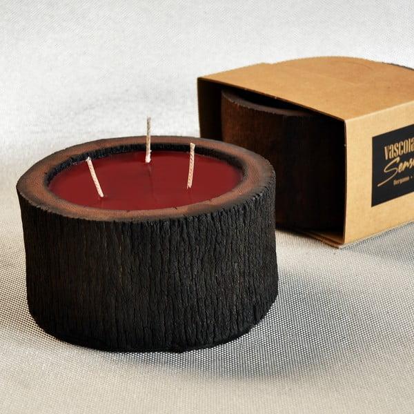 Palmová sviečka Legno Cera s vôňou exotického ovocia, 40 hodín horenia