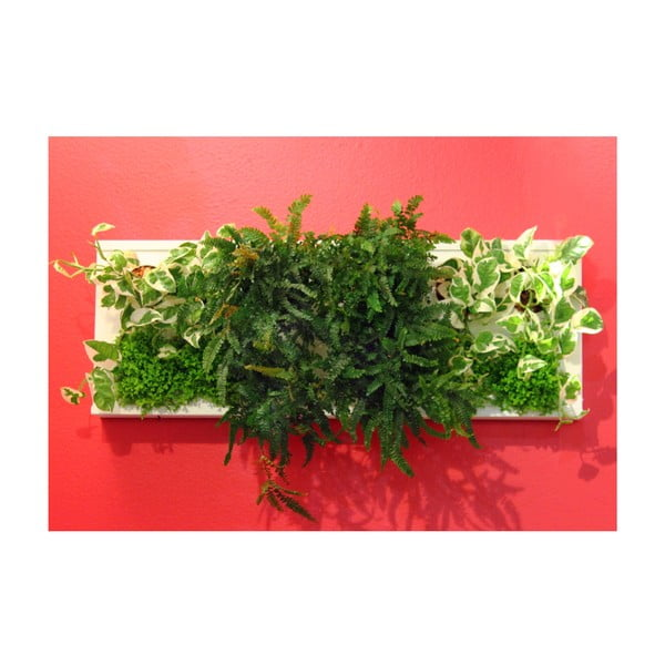 Vertikálny kvetináč HOH! Duo Bianco, 77x28 cm