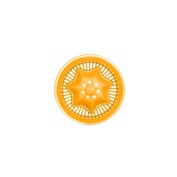 Citruszinger, fľaša na vodu a citrusy, oranžováorandžová
