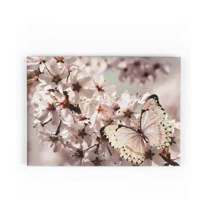 Obraz Graham&Brown Butterfly Branch, 70x50cm