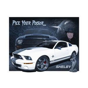 Plechová ceduľa Shelby, 30x40 cm