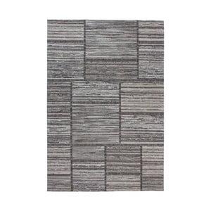 Sivý koberec Kayoom Vivis, 120 x 170 cm
